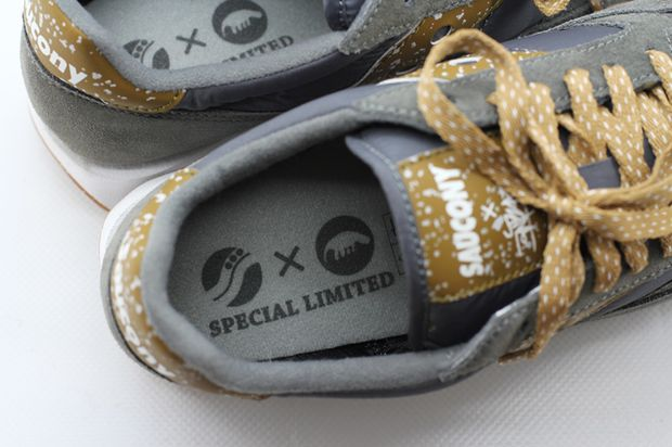 ant-eater-saucony (3)