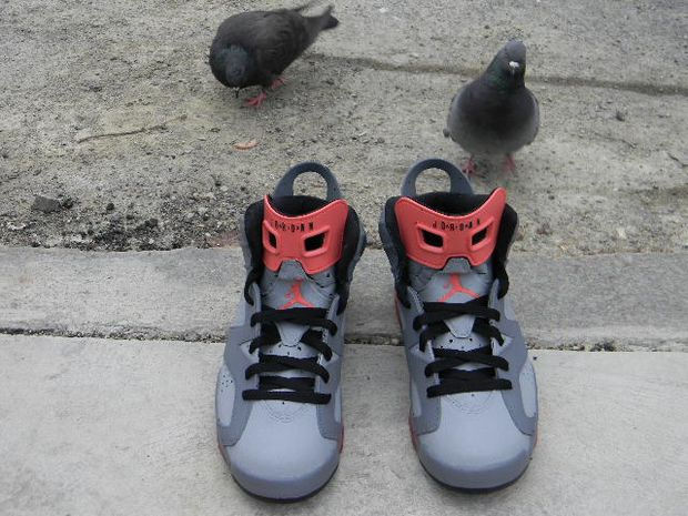 air-jordan-6-pigeon-customs (11)
