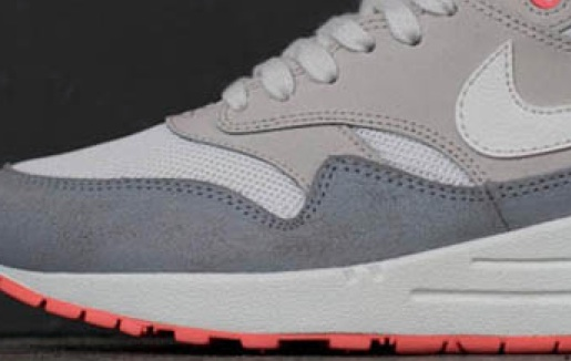 Pigeon-wmns air max 1-nike-cover