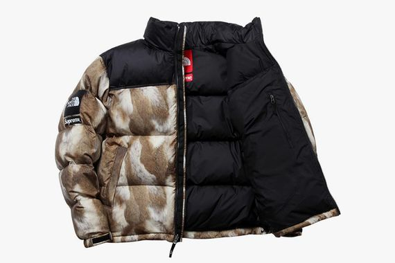 supreme-north face_02