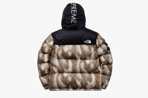 supreme-north face_04