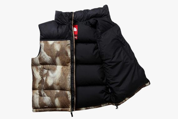 supreme-north face_06