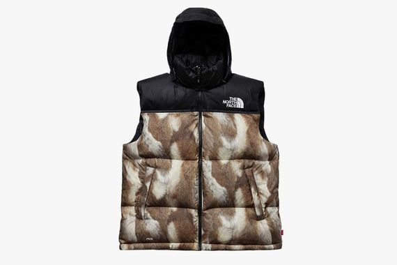 supreme-north face_07
