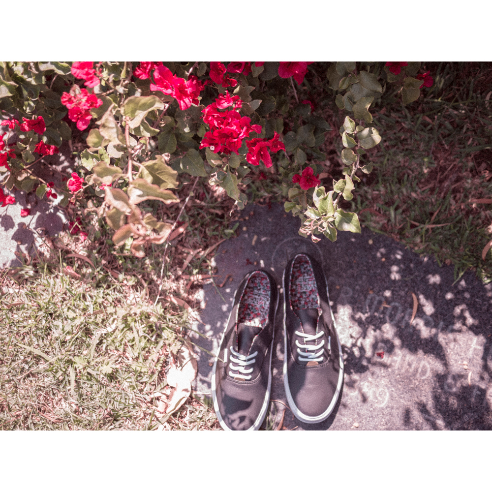 Vans-California-Collection_Era-Decon-CA_Hero-Image_Spring-2014