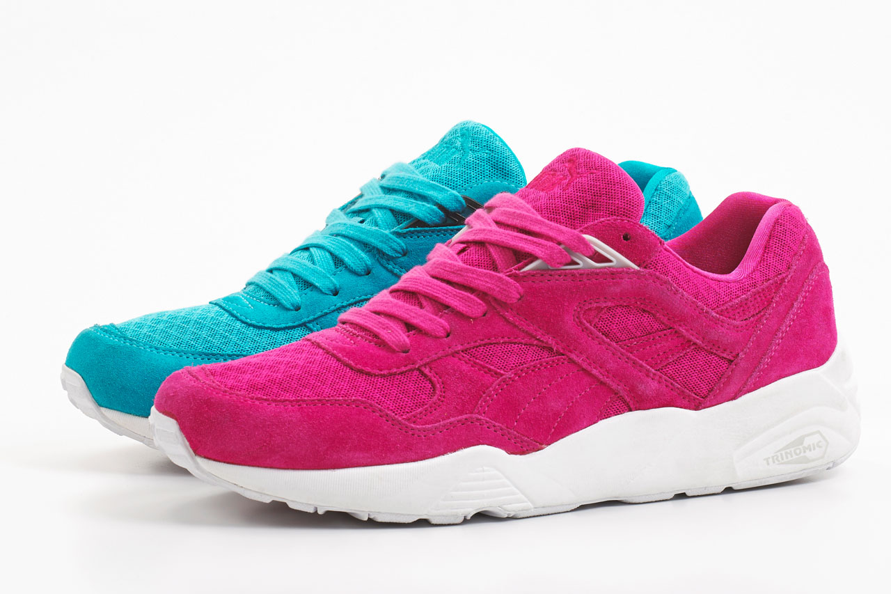 puma_mesh_evoloution_3