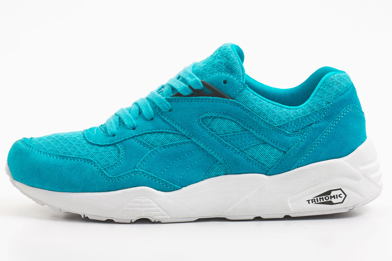 puma_mesh_evoloution_7