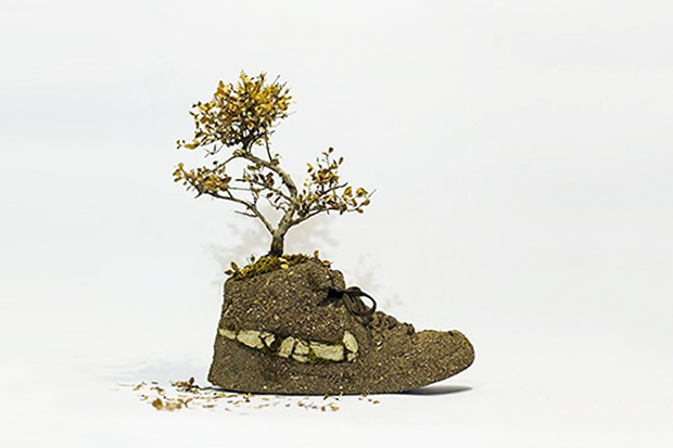 just-grow-it-crafting-nike-sneakers-from-flowers-2