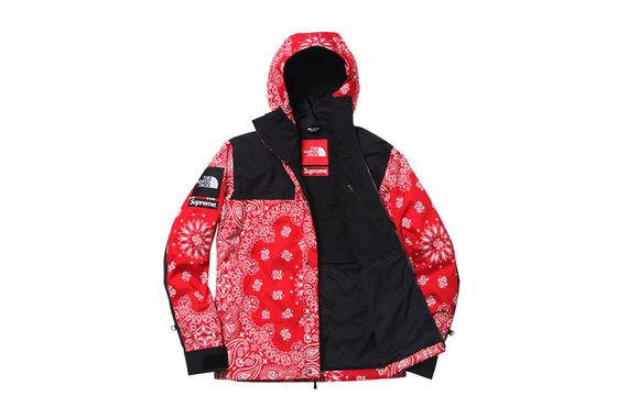 supreme-north face-fw14_05
