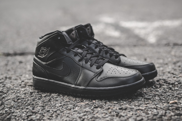 air-jordan-1-essentials-bumper-6