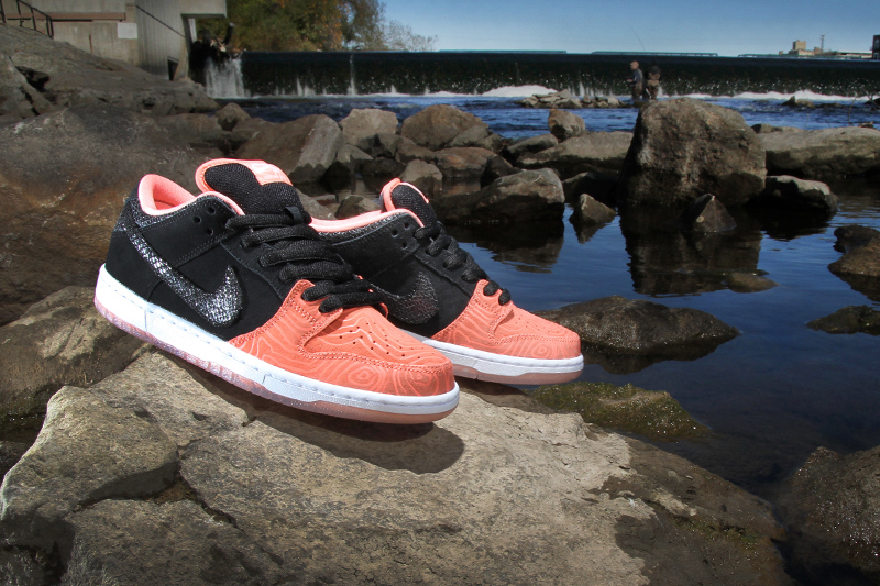premier-nike-sb-dunk-low-salmon-ladder-pack-1