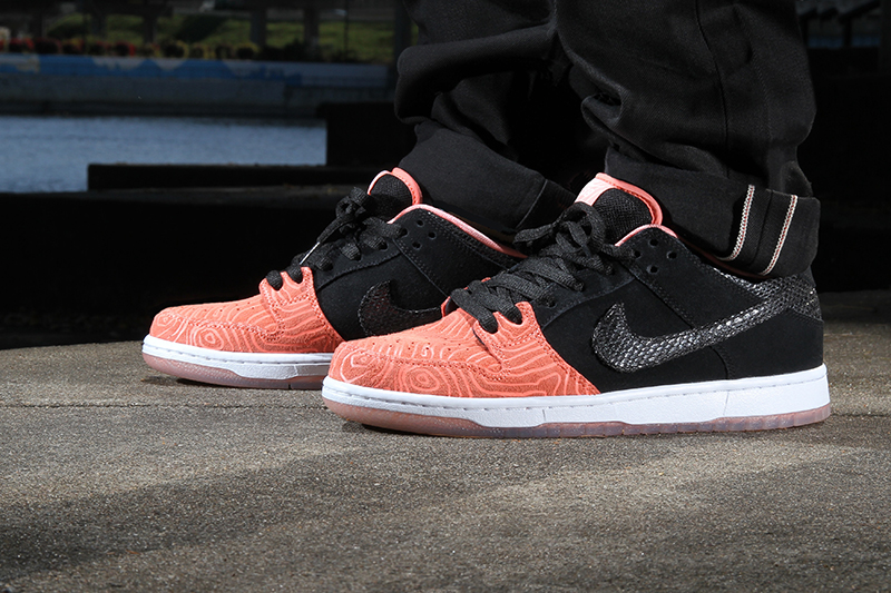 premier-nike-sb-dunk-low-salmon-ladder-pack-2