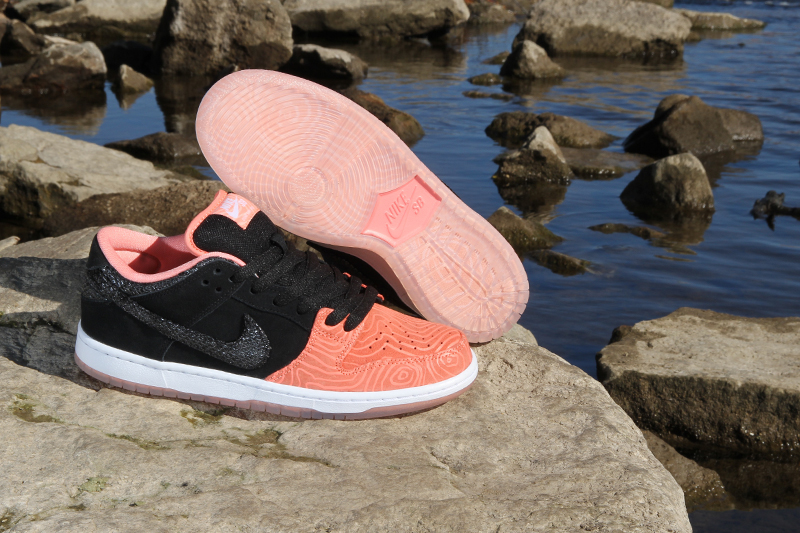 premier-nike-sb-dunk-low-salmon-ladder-pack-4
