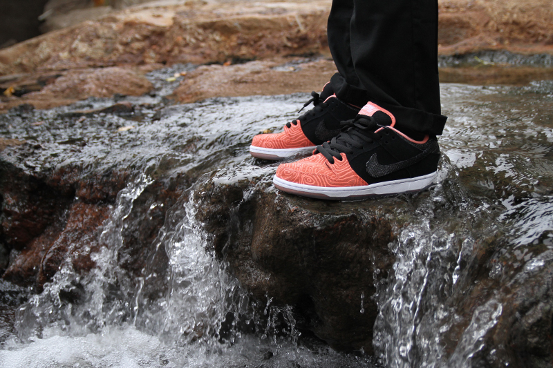 premier-nike-sb-dunk-low-salmon-ladder-pack