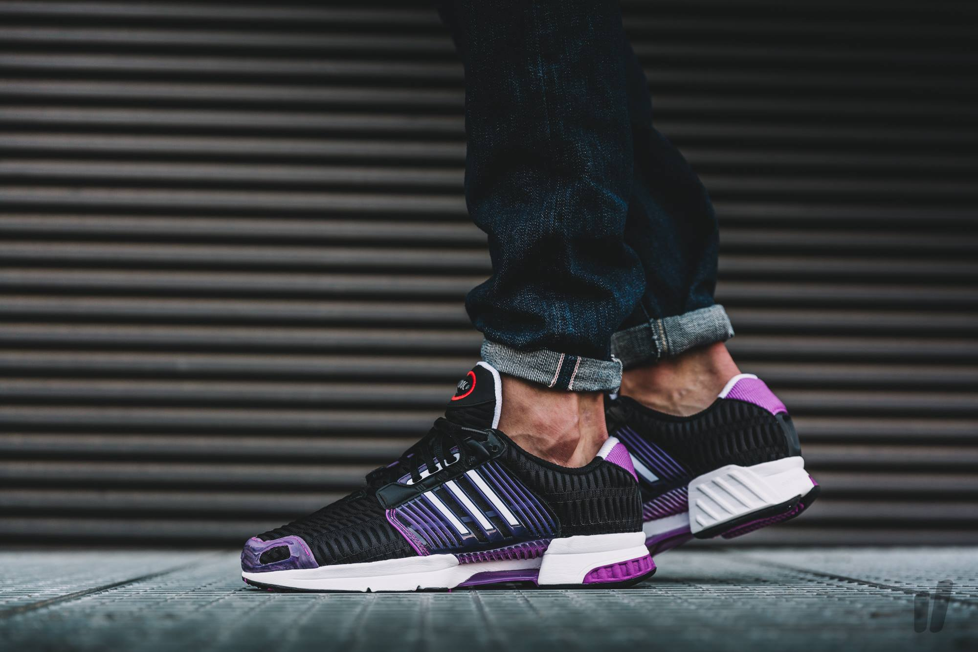 adidas-climacool-1-shock-purple