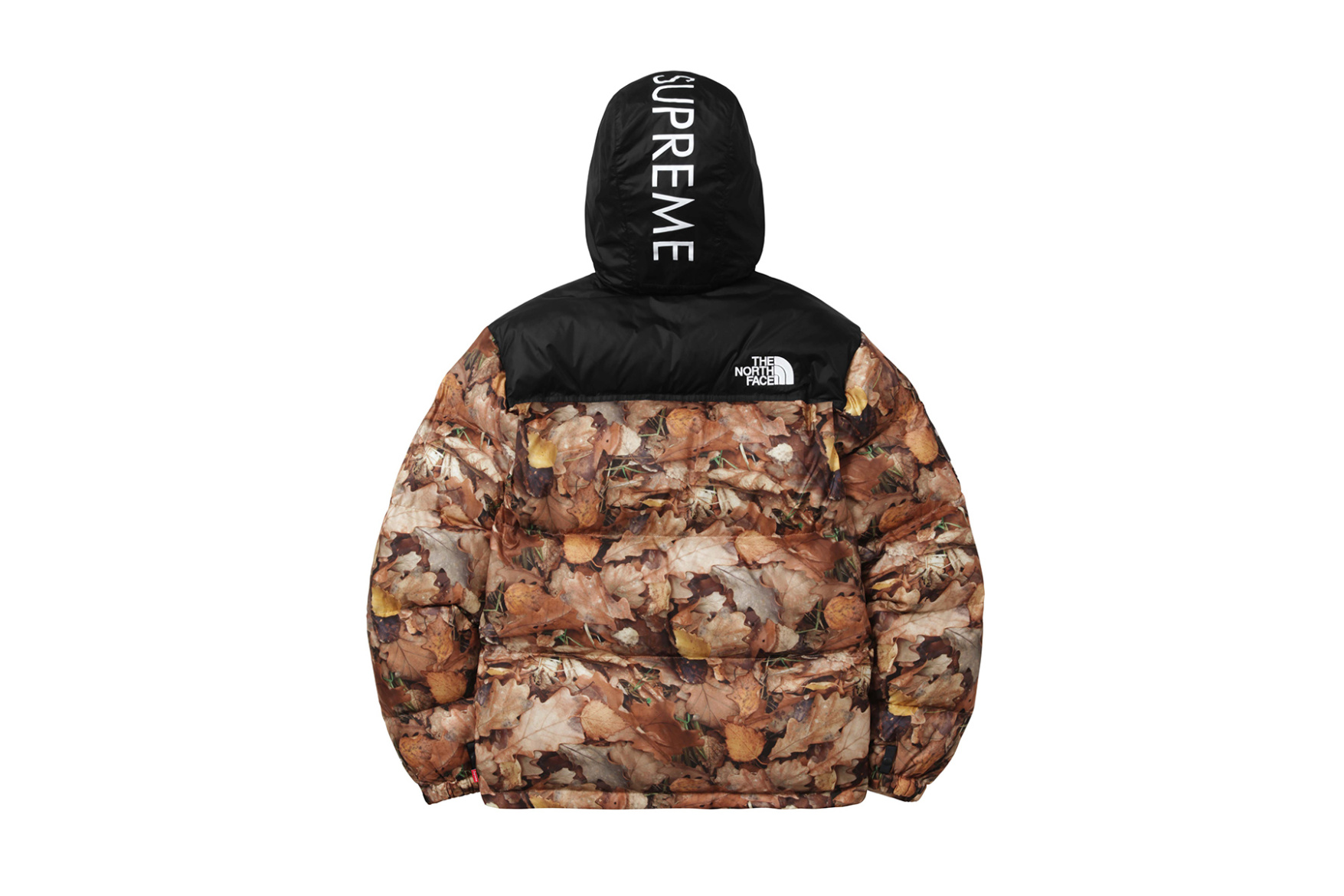 supreme-x-the-north-face-2016-fall-winter-collection-10