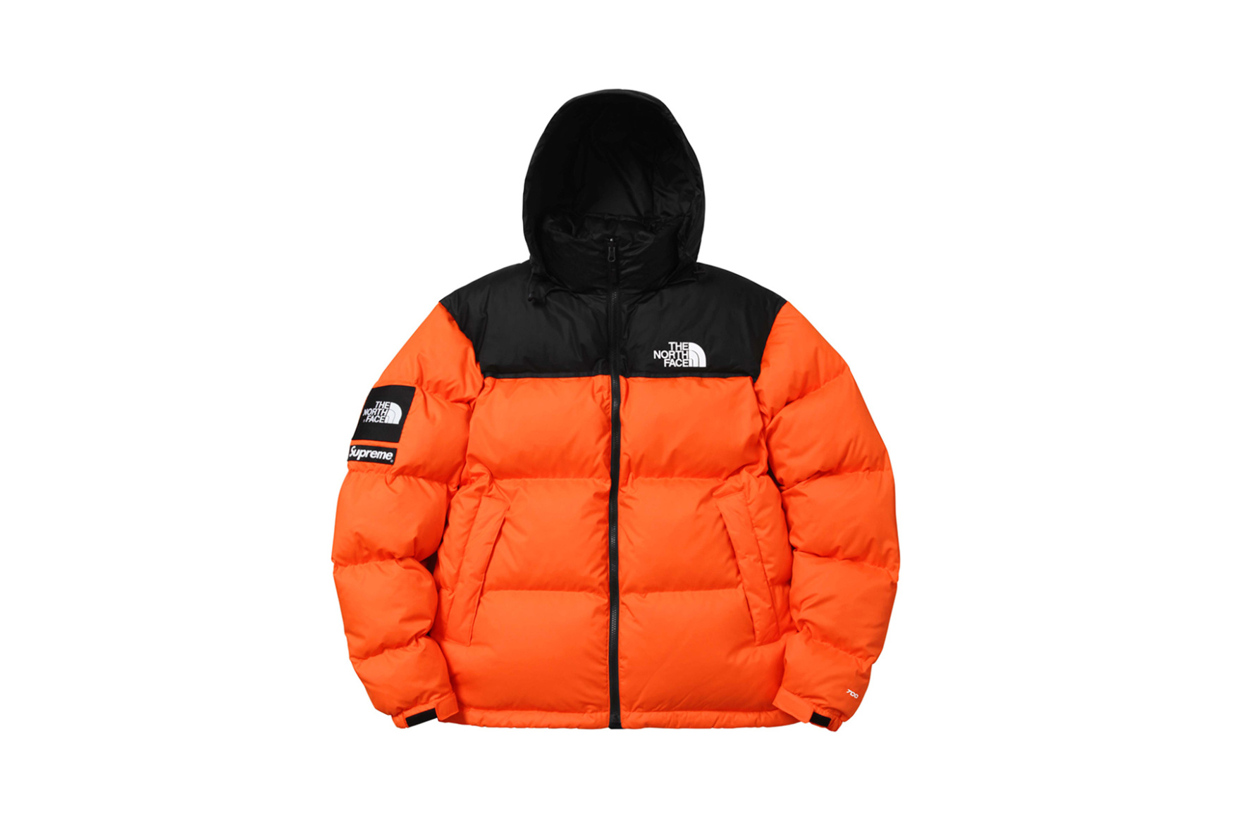 supreme-x-the-north-face-2016-fall-winter-collection-12