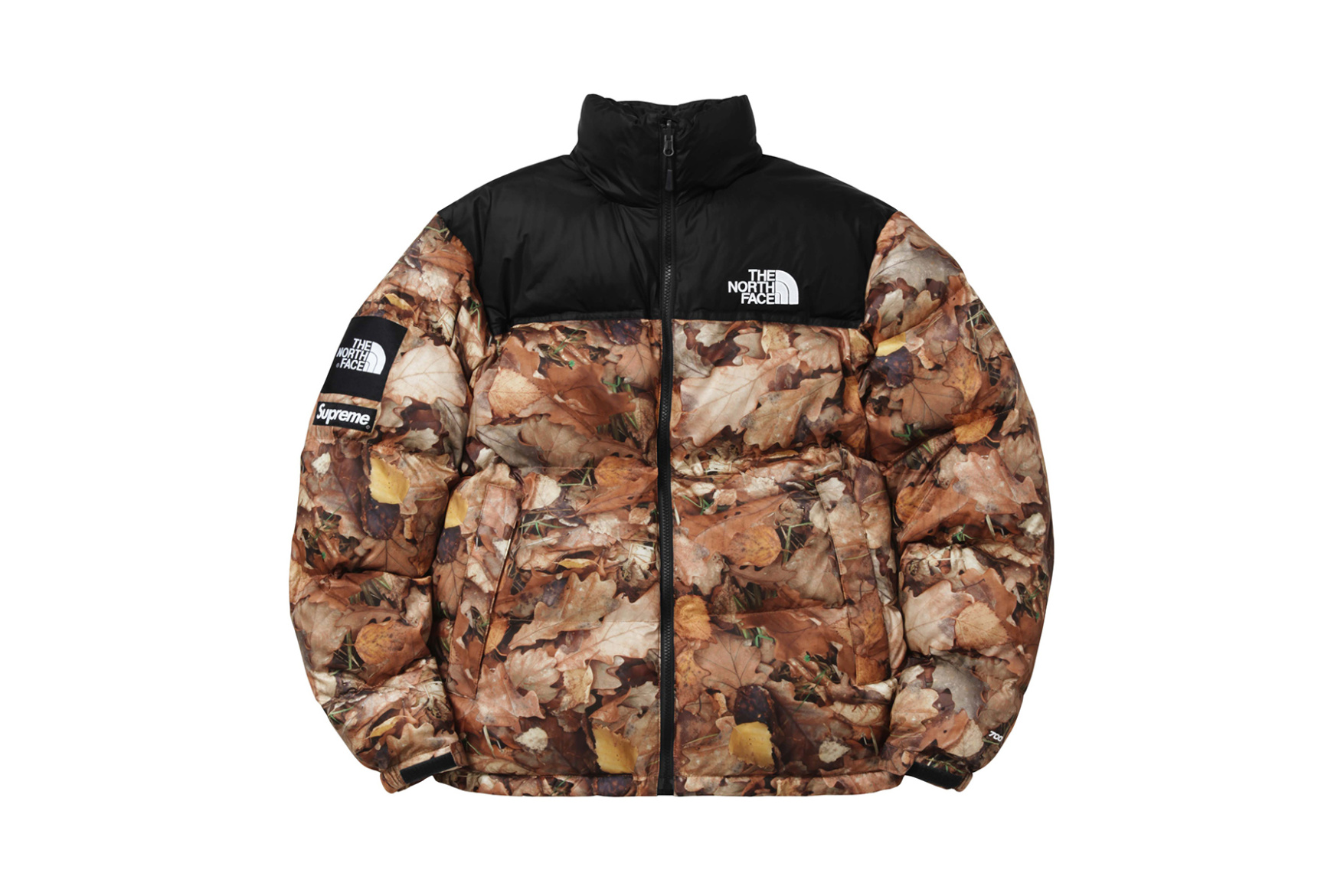 supreme-x-the-north-face-2016-fall-winter-collection-7