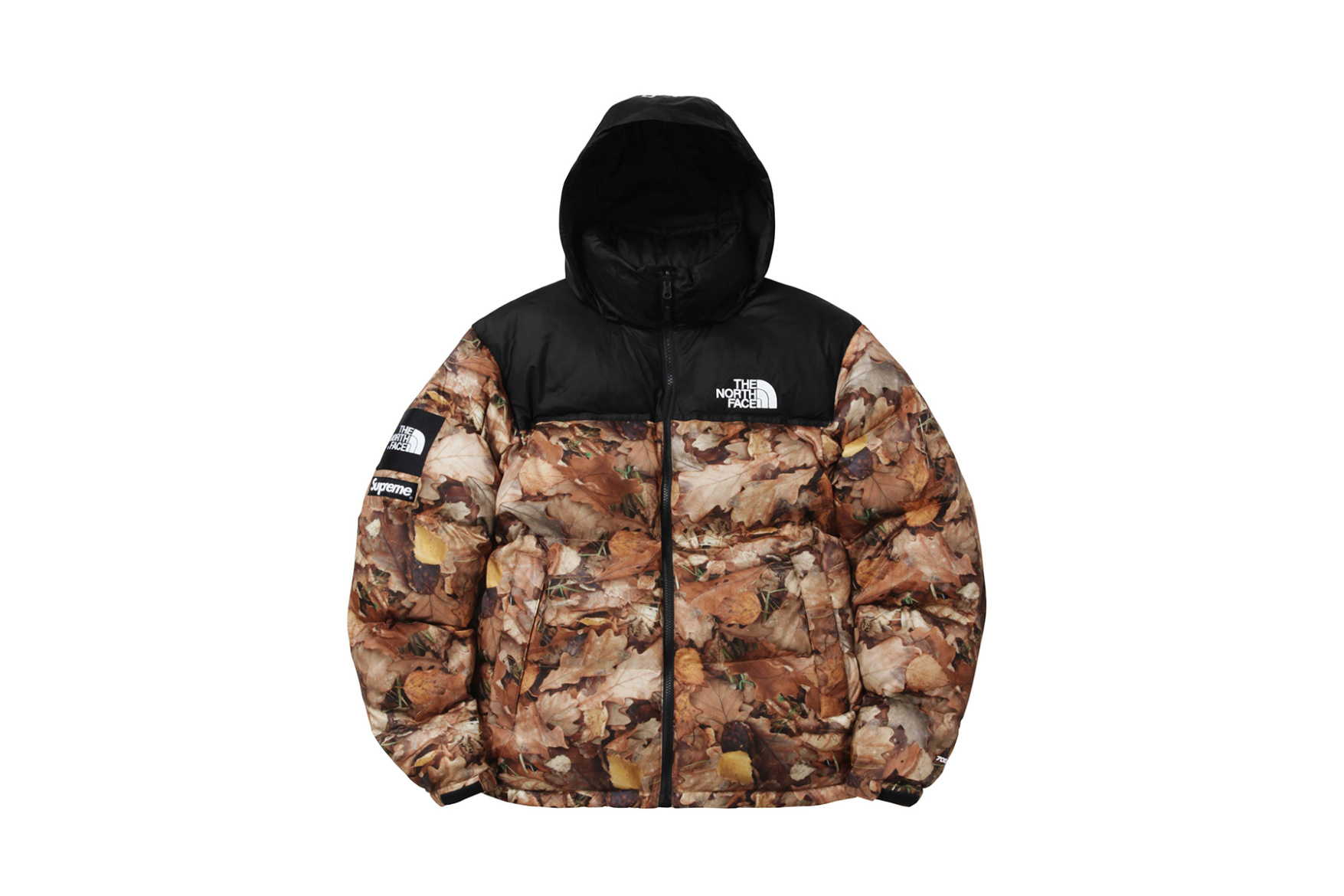 supreme-x-the-north-face-2016-fall-winter-collection-8