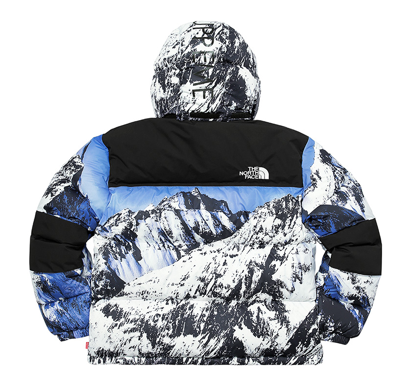 North Face X Supreme Jacket